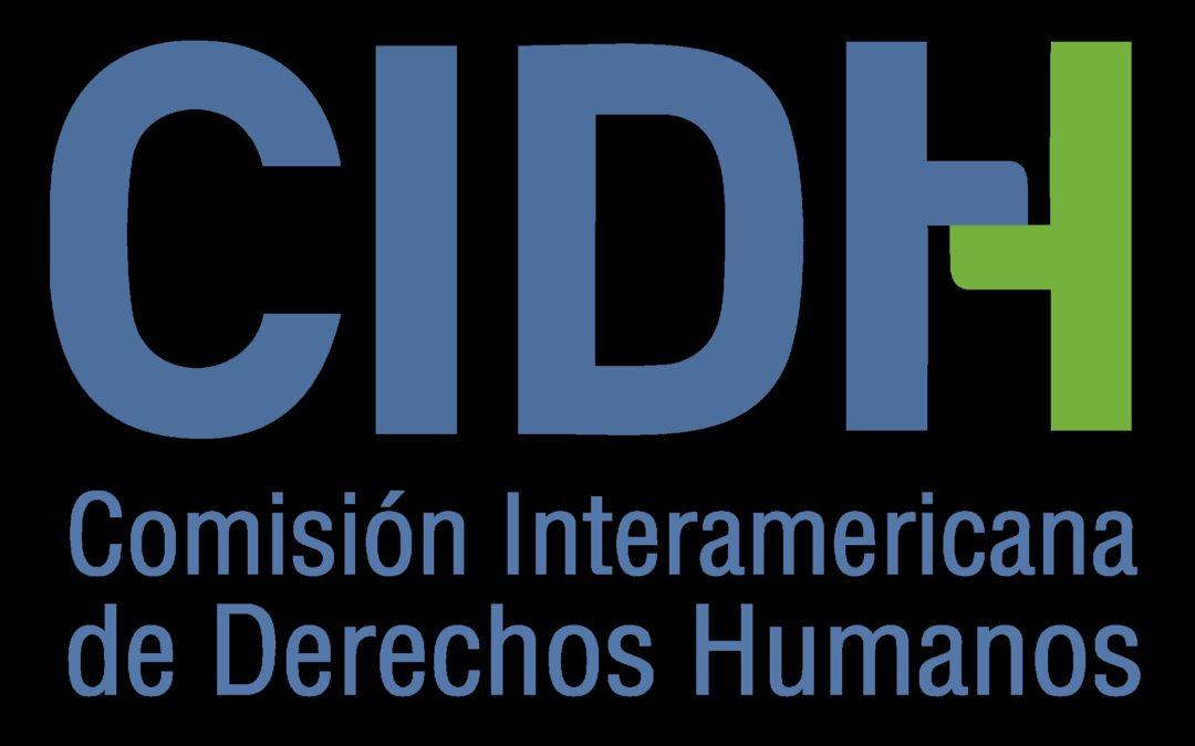 CIDH exhorta a países miembros a adoptar políticas públicas para garantizar el derecho a la salud mental de las personas bisexuales