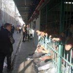 Covid-19: Los argumentos de la ONG «81 Razones para Luchar» para pedir el traslado de internos o cierre temporal de la Cárcel de Puente Alto